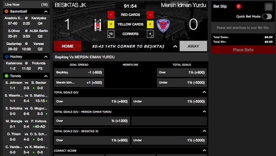 Bovada cricket betting